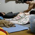 【素人カップル盗撮動画】散らかった部屋で彼女とイチャ付く男、そしてはじまるいつものエッチ・・・と、我関せずで寝る犬