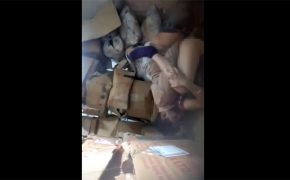 【監視カメラ】店舗の倉庫でセックスしてるインドの従業員