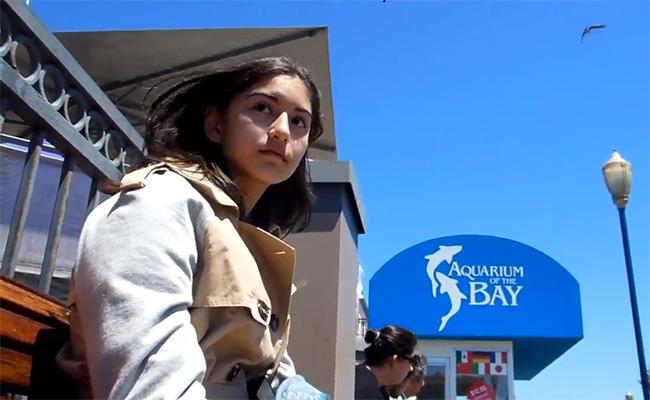 【街角チンコ露出動画】水族館前にて美女の真横のベンチ座りチンコ露出する変質者
