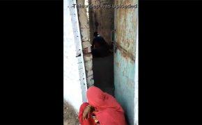 【路上盗撮動画】掘っ立て小屋の中でセックスをする男女・・・と、入り口で番をする女性
